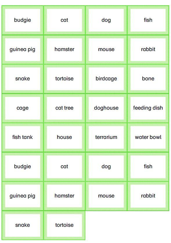 Memory Wortkarten pets